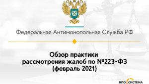 Обзор практики рассмотрения жалоб по №223-ФЗ